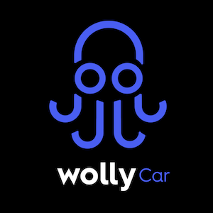 Wolly Car